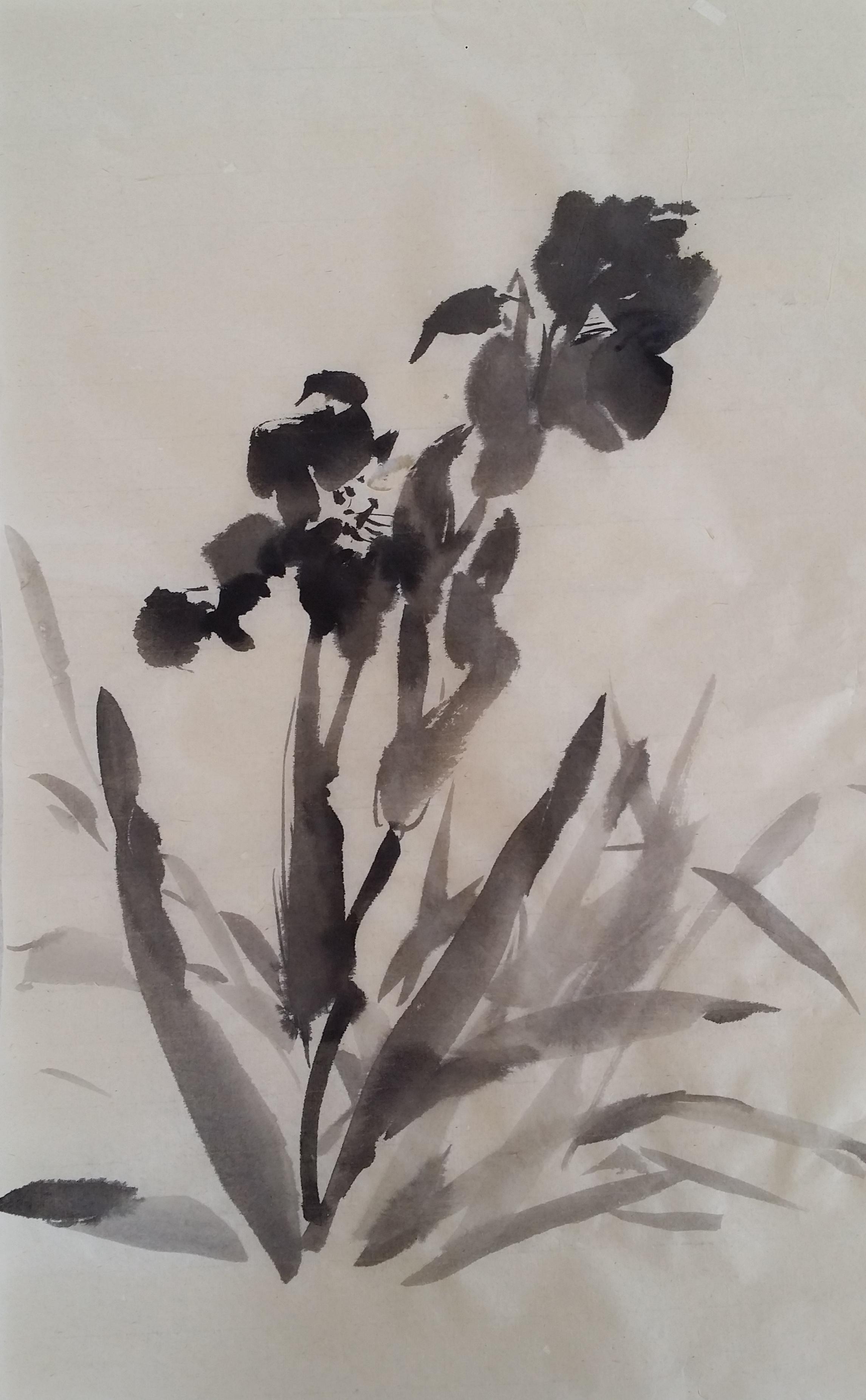 Iris #6